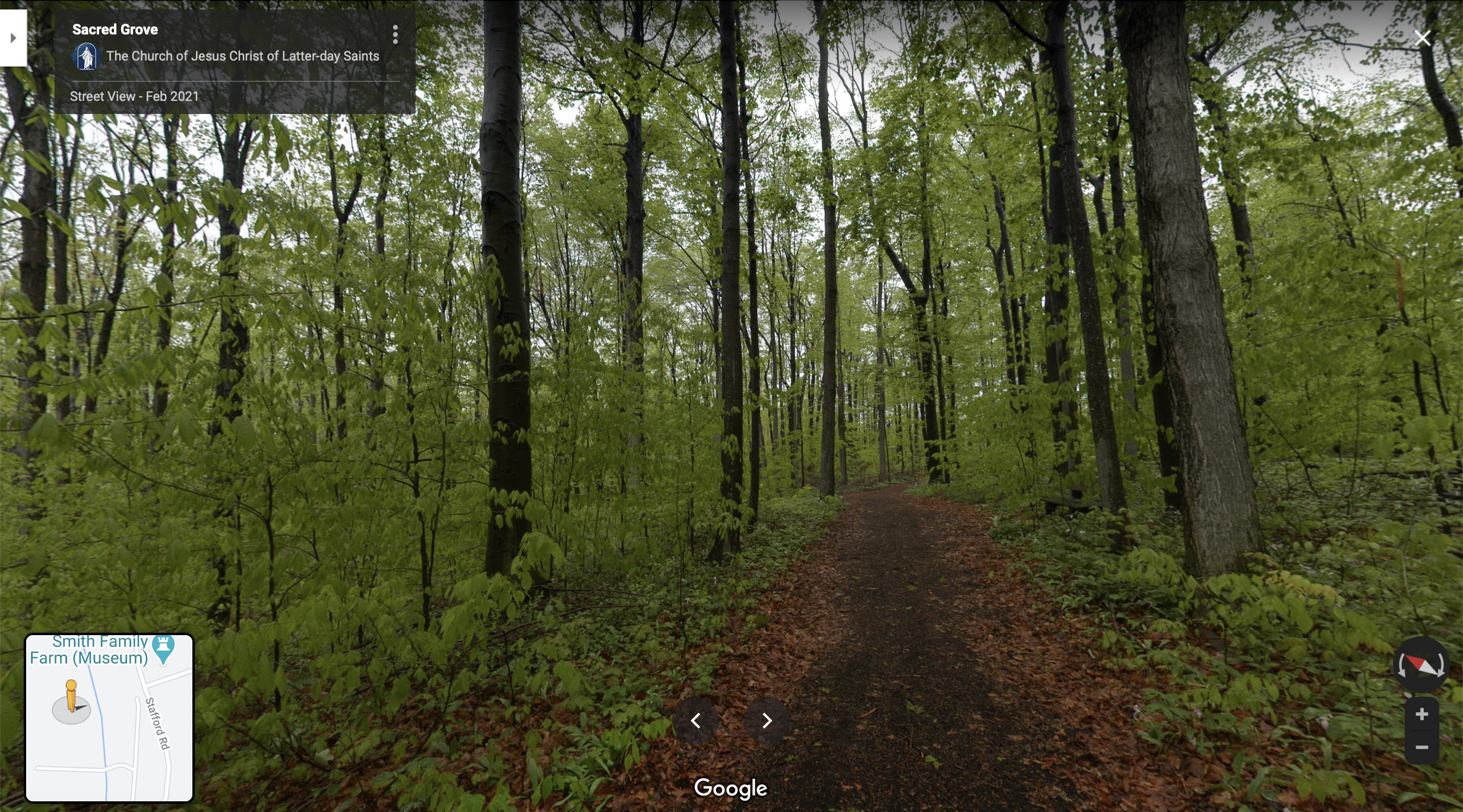 Screenshot of the Google Maps 360 view of the Sacred Grove